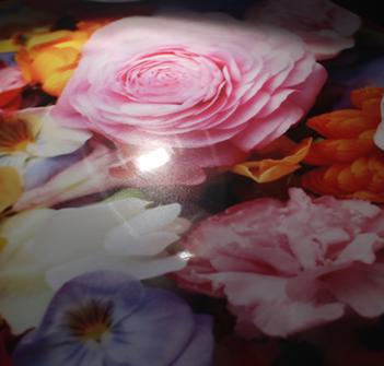 グロスラミネートはデザインの色味が鮮やかになります。